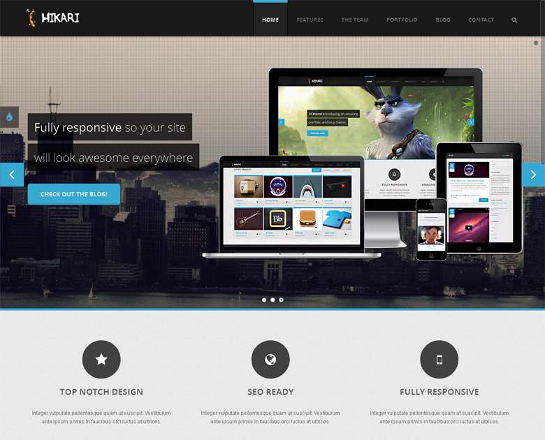 Responsive WordPress Portfolio Theme Hikari