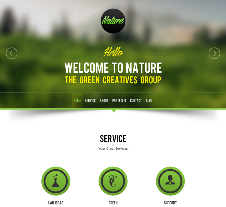 Responsive WordPress Portfolio Theme Nature