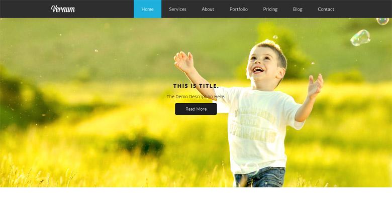 Responsive WordPress Portfolio Theme Vernum